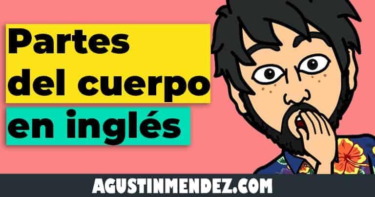 partes del cuerpo en ingles y español